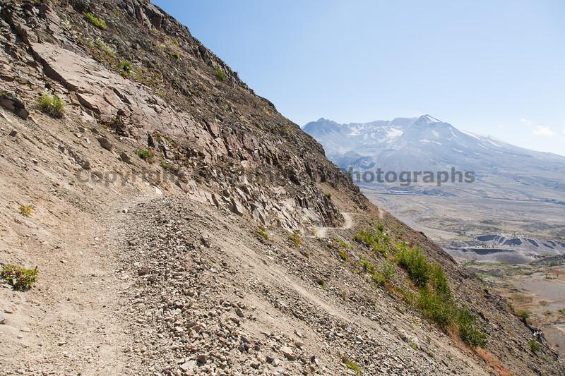 Mt St Helens Johnston Ridge Trail 156
