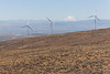 Wind Farm 47