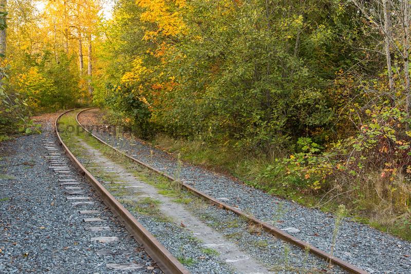 Railroad Tracks in Autumn 23