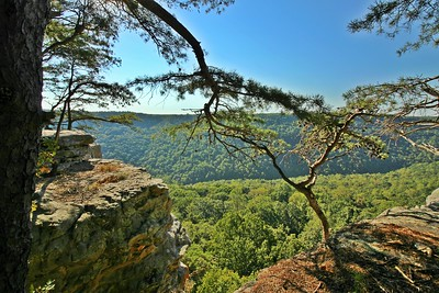 South Cumberland State Park 9/25/16