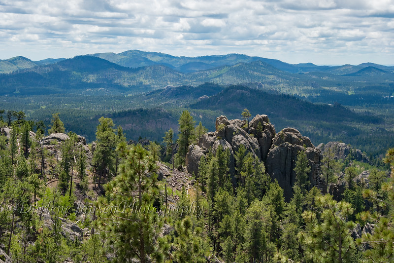 View from Needles Highway #9