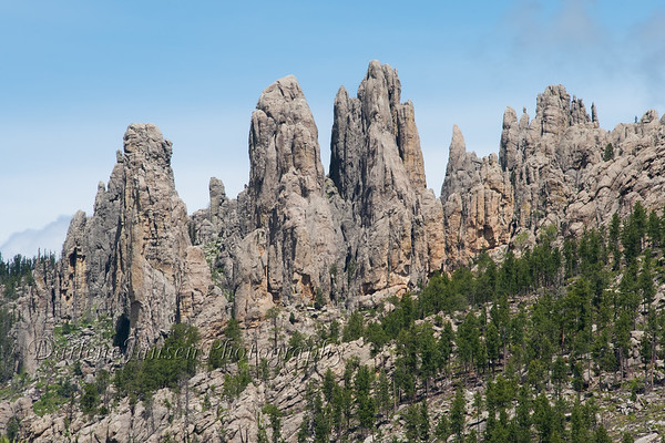 Needles Highway South Dakota #12