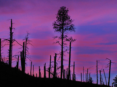 Sunset near Custer National Park