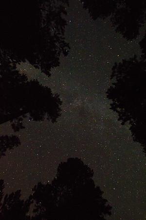 Milky! South Dakota