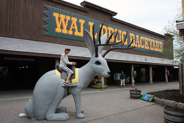 "Niko at the world famous Wall Drug in SD. Where else you can ride the famed South Dakota Jackalope, and get your fill of fudge, dinosaurs, free ice water, and old Western ""stuff"" all in one stop?"