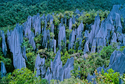 Pinnacles-Borneo-Asia