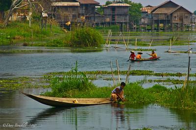 Myanmar-Burma-Asia-8