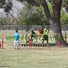 SpringFest 2014 (20)