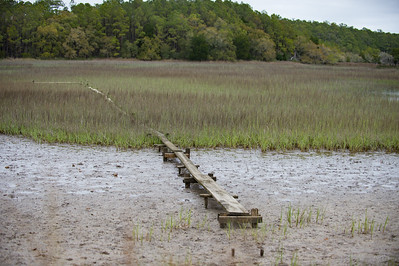 A board walk allows researchers to traverse  the mud.