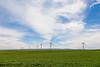 Wind Farm Spring 50