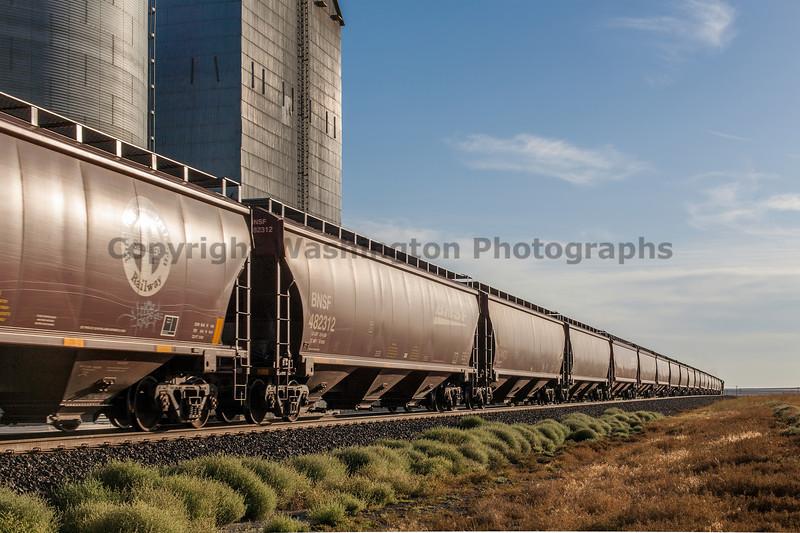 Grain Elevators 21