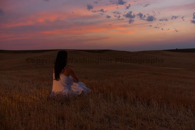 Wheat Harvest 93
