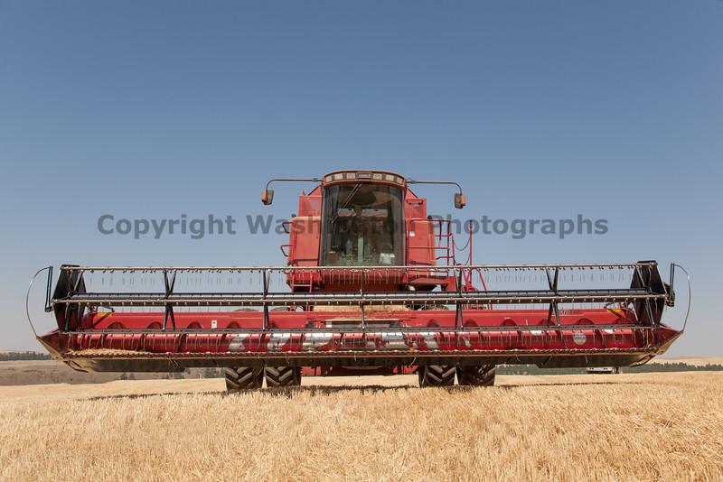 Wheat Harvest 72