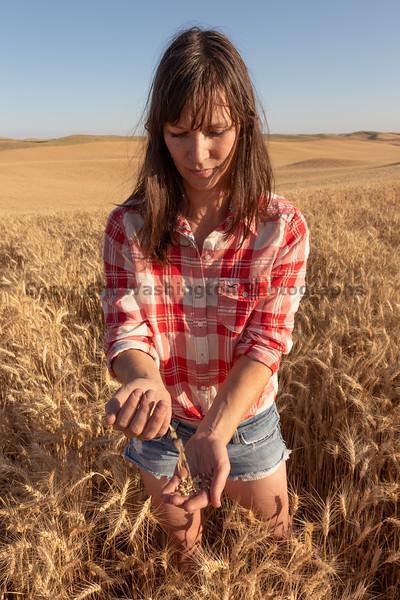 Wheat Farm Girl 288