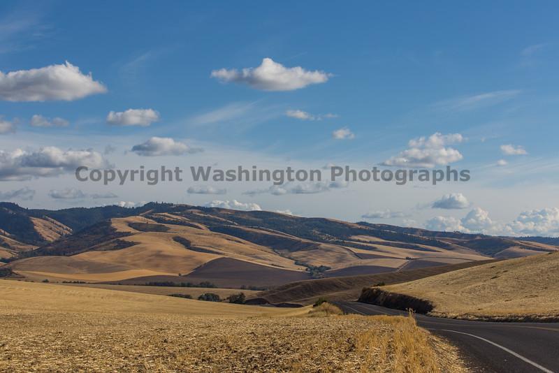 Walla Walla Hills 11