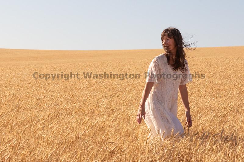 Wheat Farm Girl 260