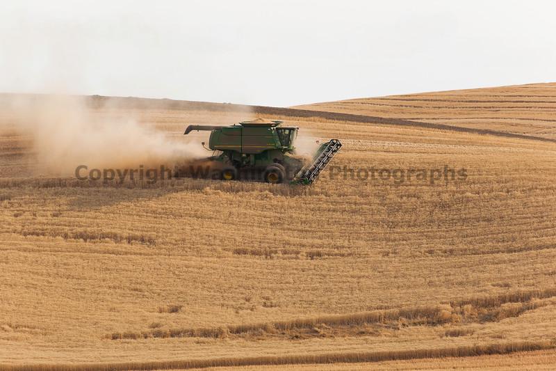 Wheat Harvest 59