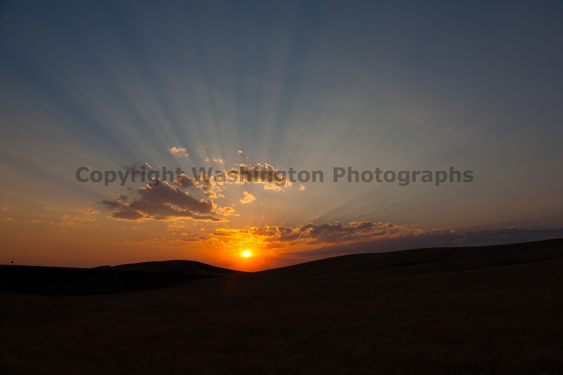 Wheat Fields Sunset 15