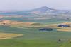Wheat Fields from Skyline Drive 14