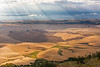 Steptoe Butte Summer 44