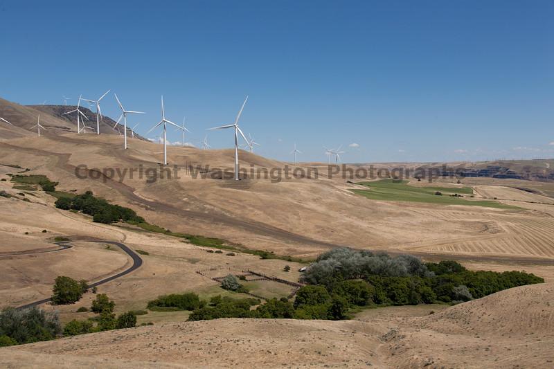 Wind Farm 37