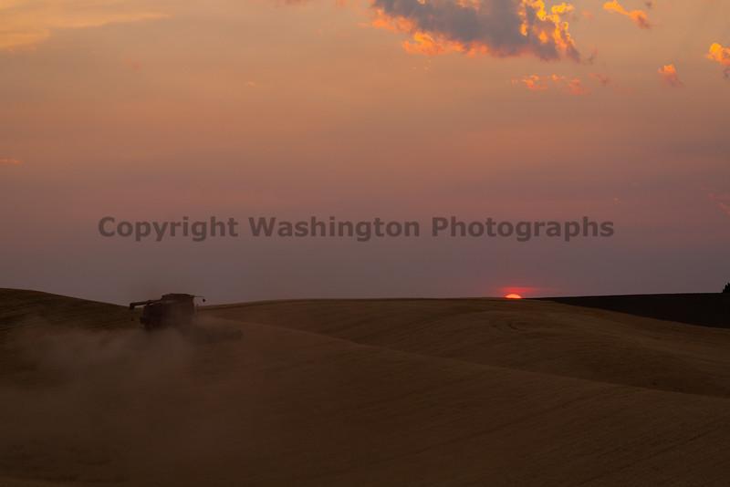 Wheat Harvest 90