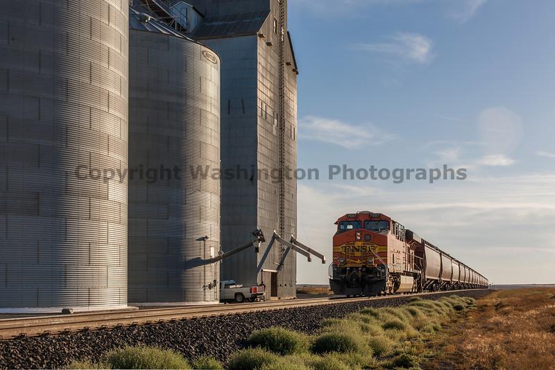 Grain Elevators 23