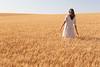 Wheat Farm Girl 263