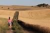 Wheat Farm Girl 277