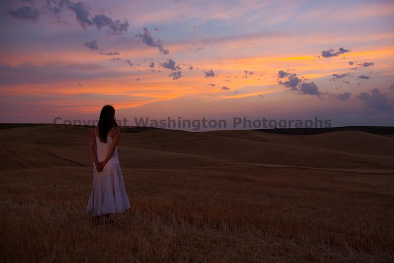Wheat Harvest 92