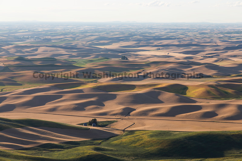 Steptoe Butte Summer 68