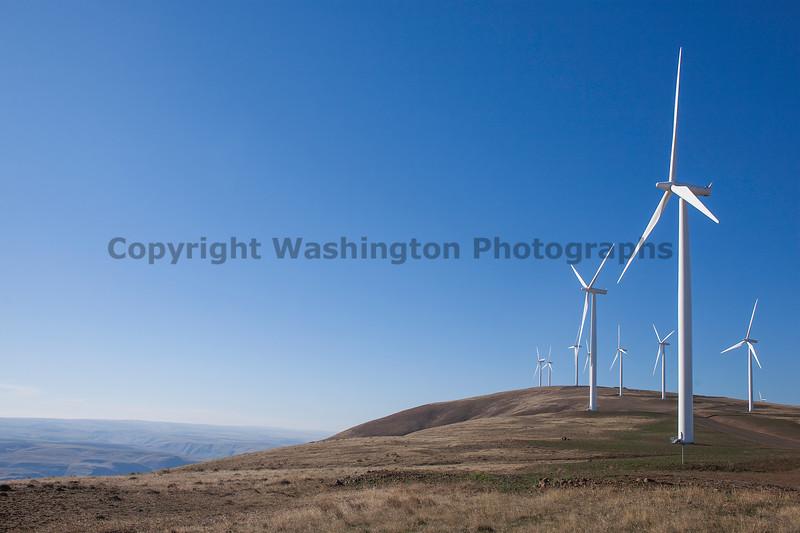 Wind Farm 03