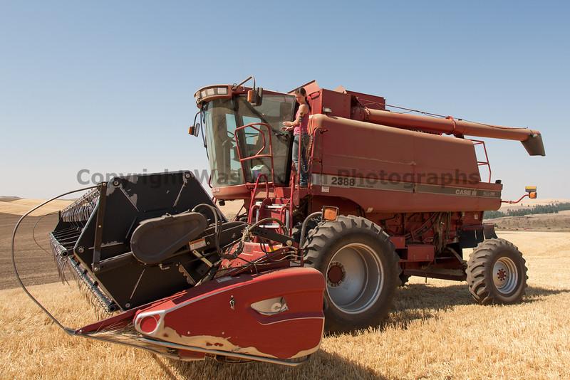 Wheat Harvest 69