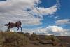 Horse Sculpture 12
