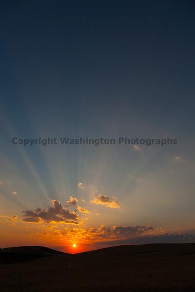 Wheat Fields Sunset 17