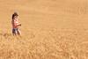 Wheat Farm Girl 283