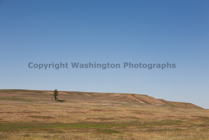 Scablands 11
