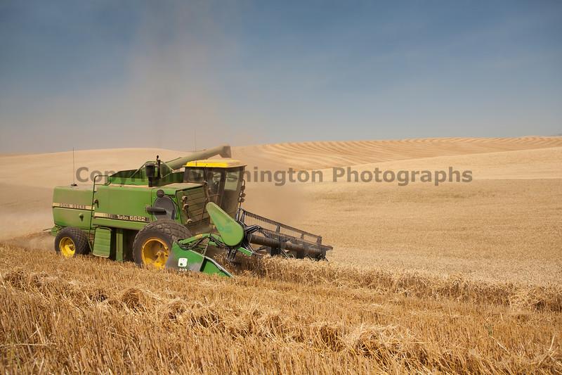 Wheat Harvest 52