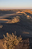 Moses Lake Sand Dunes 19