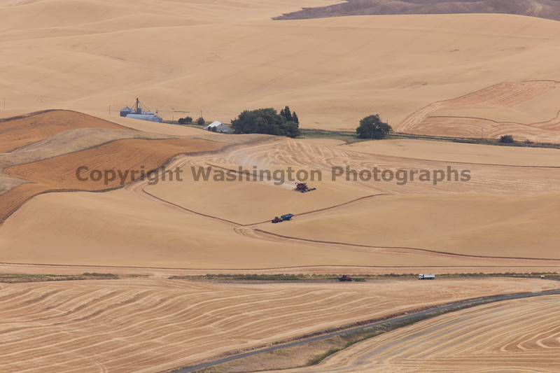 Steptoe Butte Summer 73