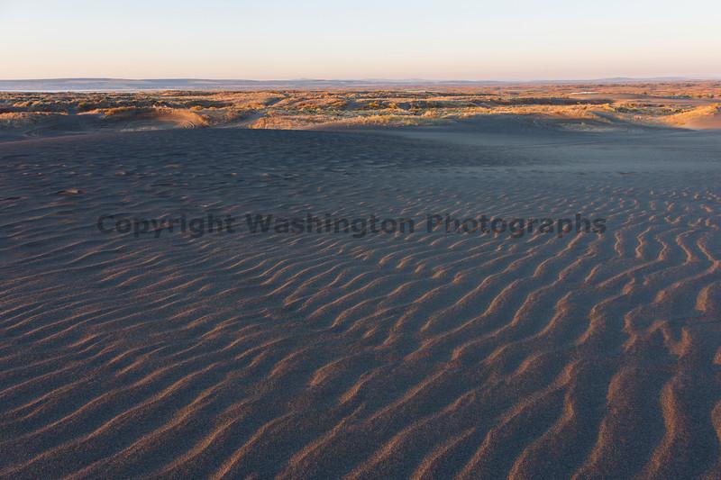 Moses Lake Sand Dunes 16