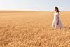 Wheat Farm Girl 262