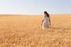 Wheat Farm Girl 261