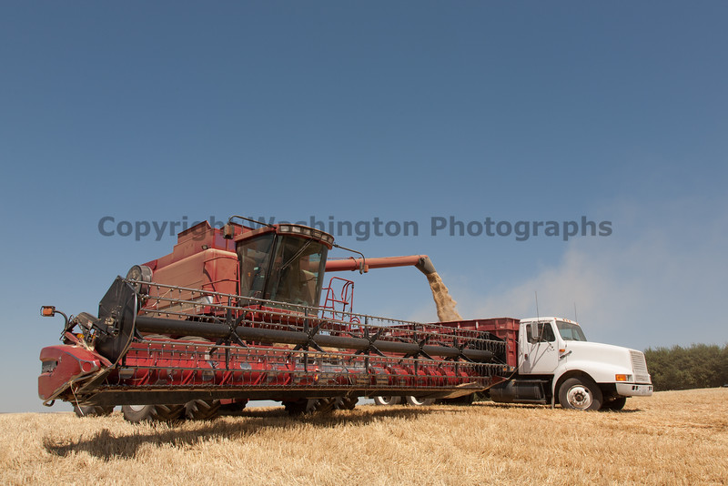 Wheat Harvest 87