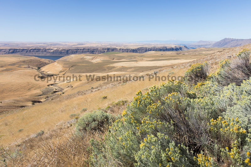Columbia River Gorge Viewpoint 55