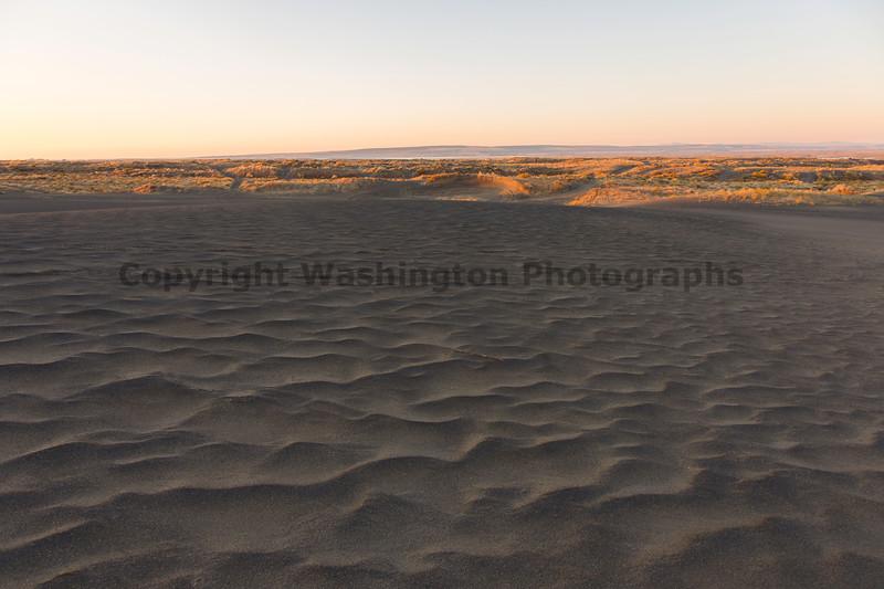 Moses Lake Sand Dunes 12