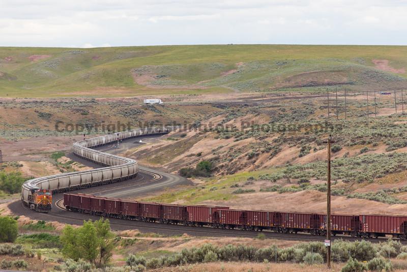 Trains near Ritzville 20