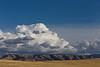Walla Walla Hills 15