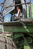Wheat Harvest 125