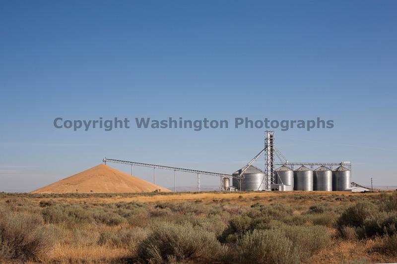 Wheat Mountain 28